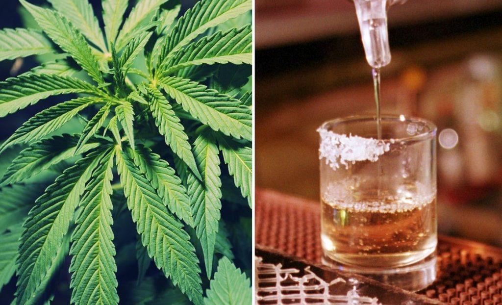 Marijuana infused vodka recipe