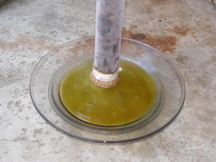 making bho oil