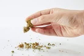 cannabis shake bags